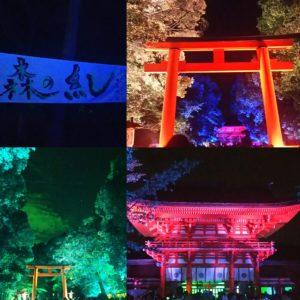 下鴨神社光の祭典2017